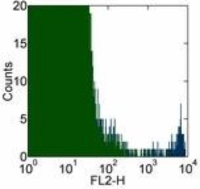 Mouse anti-Fc epsilon RI, Clone: AER-37, Novus Biologicals 0.1mg; Unlabeled:Life