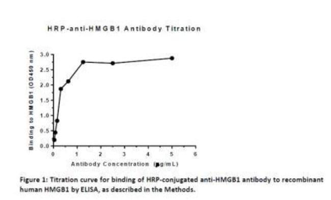 anti-HMGB1/HMG-1, Polyclonal, Novus Biologicals:Antibodies:Primary Antibodies