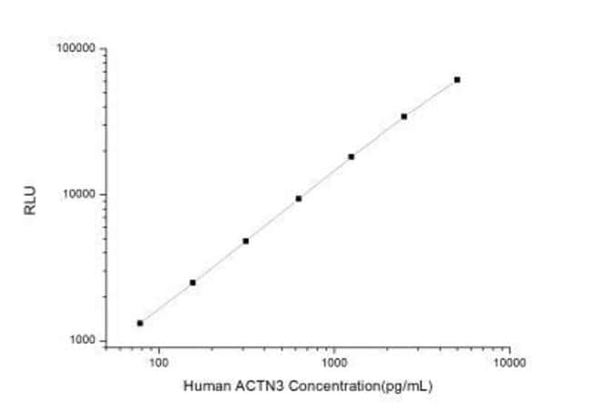 Novus Biologicals Human Alpha Actinin 3 ELISA Kit (Chemiluminescence) Quantity:
