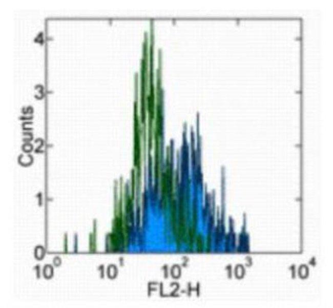 Mouse anti-IL-15 R alpha, Clone: JM7A4, Novus Biologicals:Antibodies:Primary