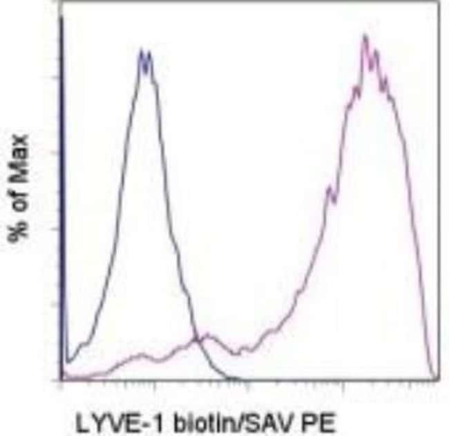 Rat anti-LYVE-1, Clone: ALY7, Novus Biologicals:Antibodies:Primary Antibodies
