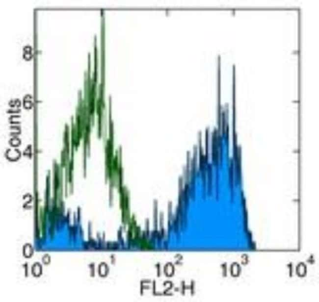 M-CSFR/CD115 Rat anti-Mouse, Clone: AFS98, Novus Biologicals:Antibodies:Primary