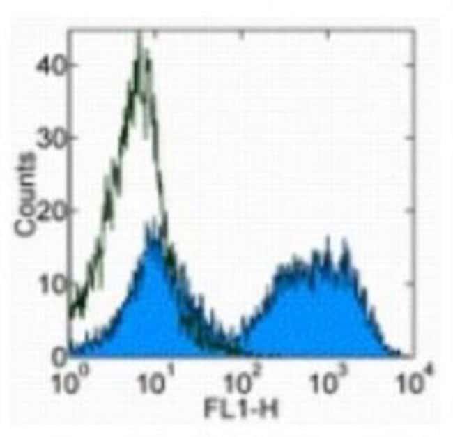 Rat anti-MHC Class II, Clone: M5/114.15.2, Novus Biologicals 0.5mg; Unlabeled:Life