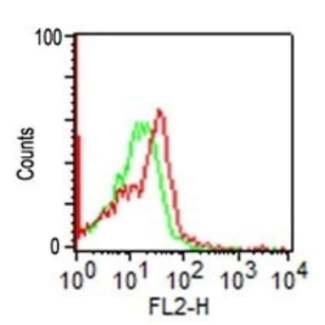Mouse anti-NCAM-1/CD56, Clone: 123C3, Novus Biologicals:Antibodies:Primary