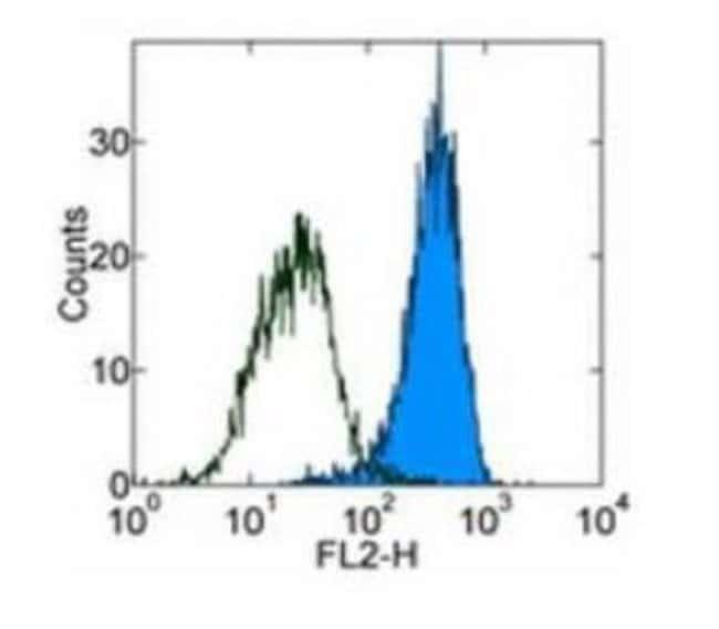 Rat anti-PDGF R beta, Clone: APB5, Novus Biologicals:Antibodies:Primary