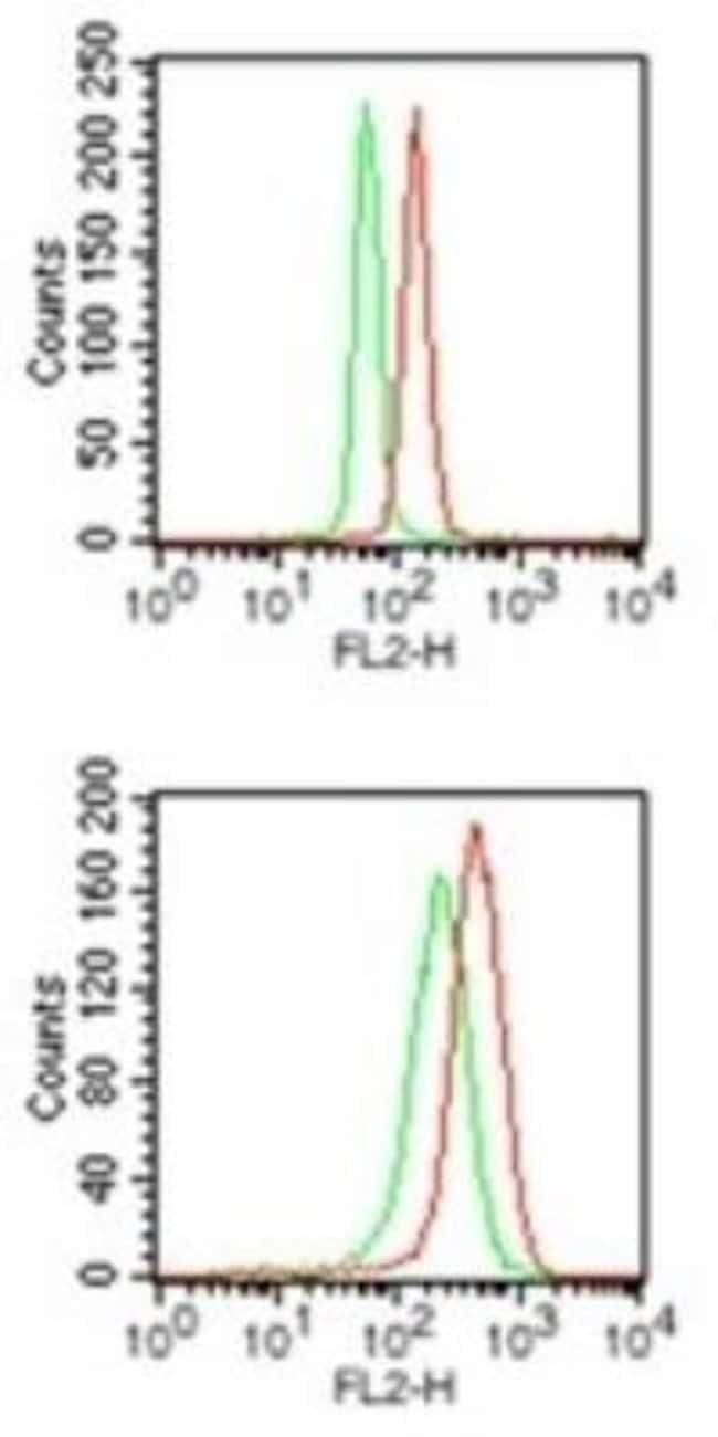 anti-PU.1/Spi-1, Polyclonal, Novus Biologicals:Antibodies:Primary Antibodies