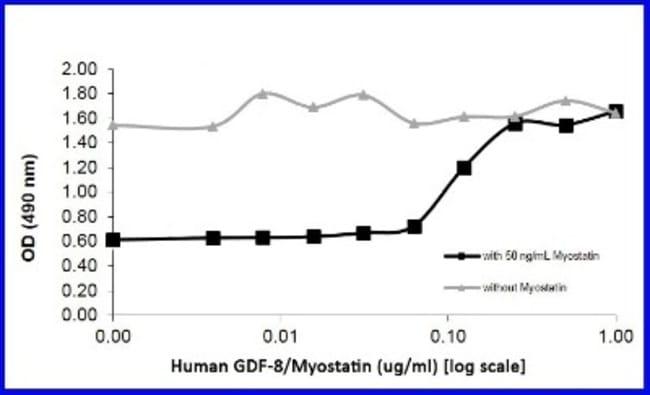 Novus Biologicals Recombinant Human GDF-8/Myostatin Protein 1 mg:Life Sciences