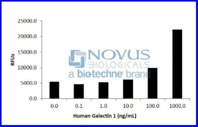 Novus BiologicalsRecombinant Human Galectin-1 Animal-Free Protein:Biochemical