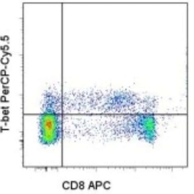 Mouse anti-T-bet/TBX21, Clone: 4B10, Novus Biologicals:Antibodies:Primary