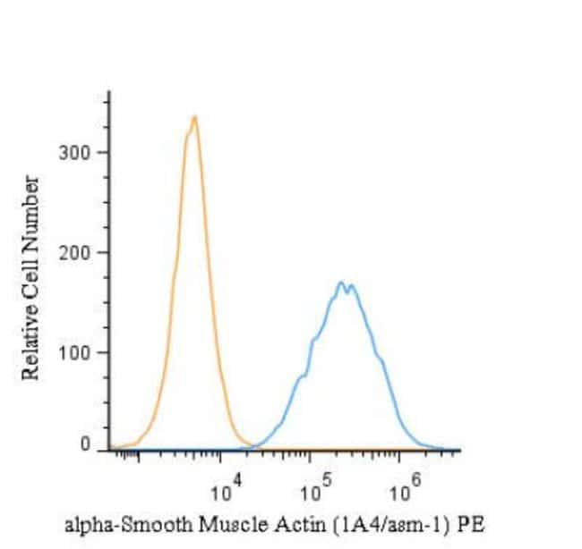Mouse anti-Actin Alpha 2 Smooth Muscle, Clone: 1A4/asm-1, Azide Free, Novus