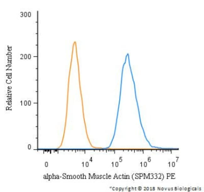Mouse anti-Actin Alpha 2 Smooth Muscle, Clone: SPM332, Azide Free, Novus