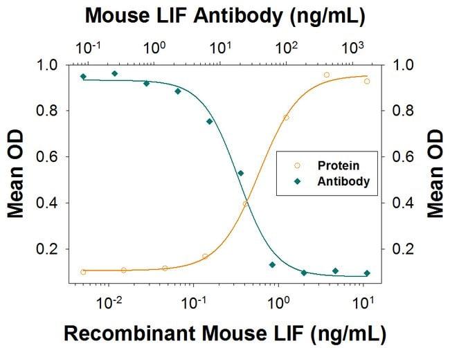 LIF Goat anti-Mouse, Polyclonal, R 25µg; Unlabeled:Life Sciences