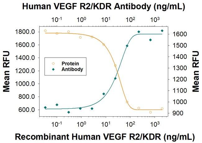VEGFR2/KDR/Flk-1, Mouse anti-Human, Clone: 89106R, R:Antibodies:Primary