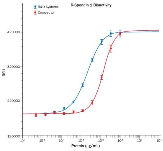 R Recombinant Human R-Spondin 1 Protein, CF Recombinant Human R-Spondin