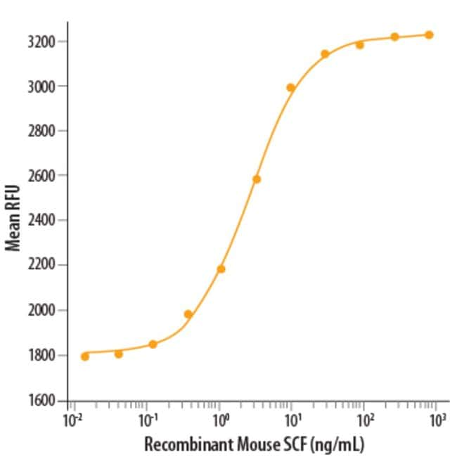 R Recombinant Mouse SCF Protein, CF 20 µg:Life Sciences