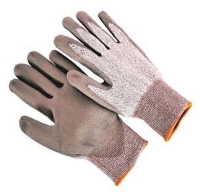 Seattle Glove Cut Resistant Gloves Size: Large:Gloves, Glasses and Safety