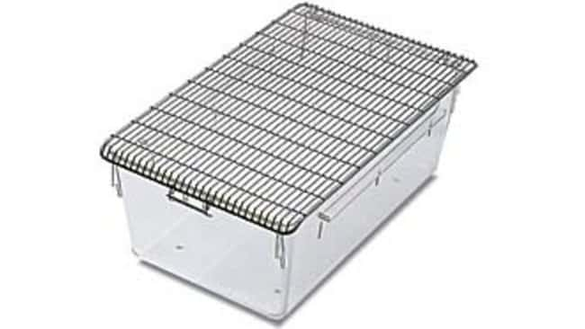 Tecniplast Stainless Steel Raised Cage Lids without Divider:Animal Research:Animal
