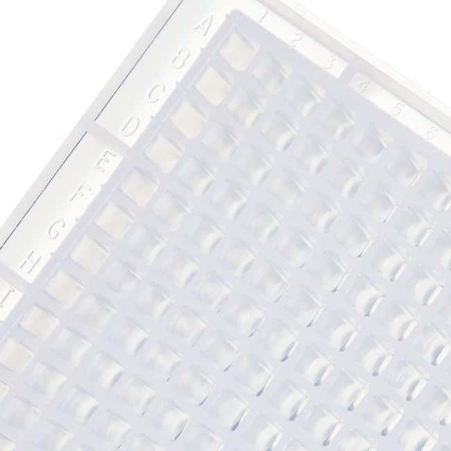 Thermo Scientific Nunc 384-Well Polypropylene Storage Microplates 384 Well