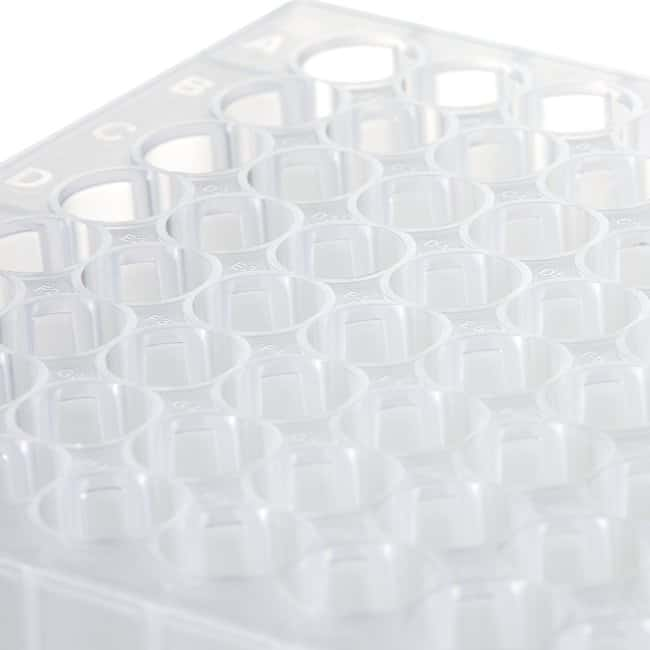Fisherbrand™ 96-Well DeepWell™ Polypropylene Microplates Sterile; Well-capacity: 1mL; 50/Case Fisherbrand™ 96-Well DeepWell™ Polypropylene Microplates