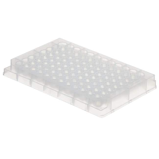 Fisherbrand™ 96-Well Polypropylene Microplates Round bottom; Non-sterile; Natural Fisherbrand™ 96-Well Polypropylene Microplates
