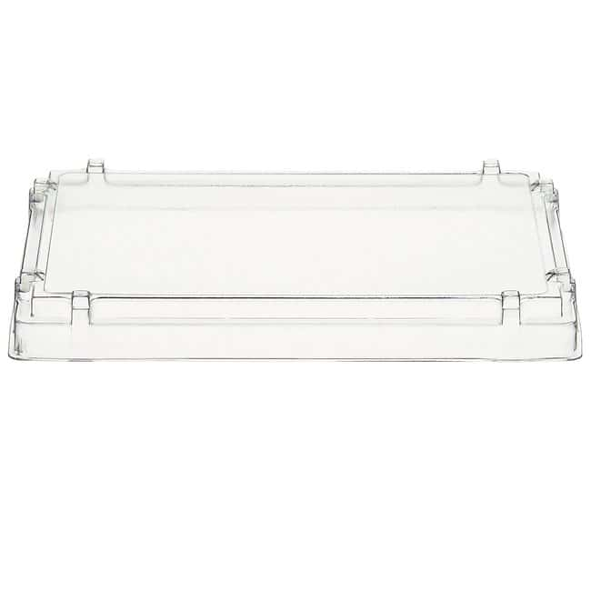 Thermo ScientificLid for Microtiter Immulon Strip Assemblies For 1 x 12