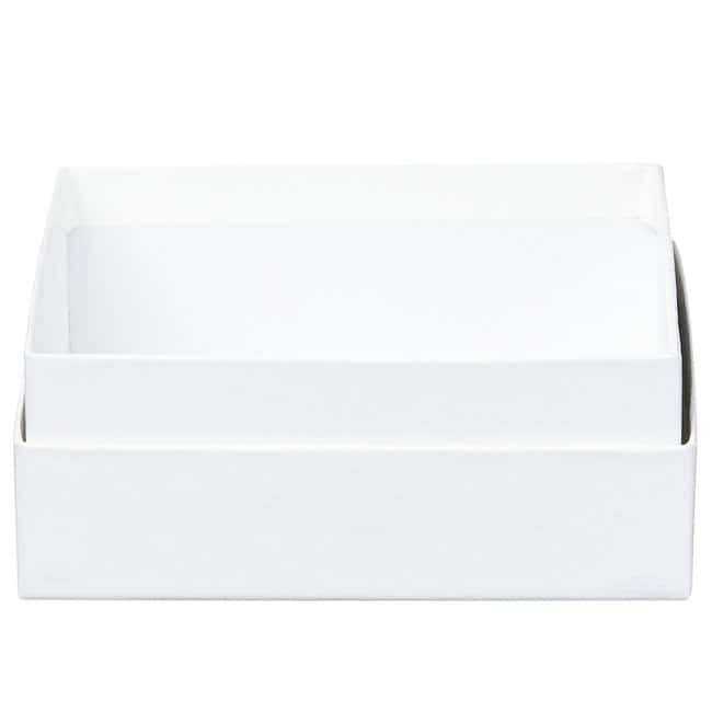 Thermo Scientific™ Storage Boxes