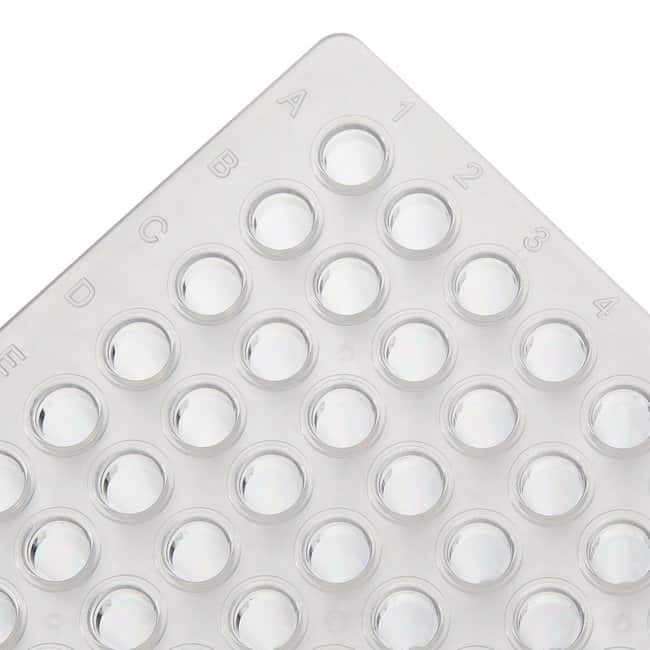 Thermo Scientific™PCR Plate, 96-well, low profile, non-skirted Clear 096 Well PCR Plates
