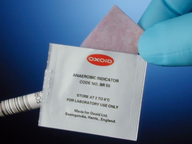 Thermo ScientificOxoid Resazurin Anaerobic Indicator 100/Pk.:Microbiology