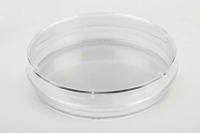 FisherbrandSurface Treated Tissue Culture Dishes Diameter: 100mm; Dimensions: