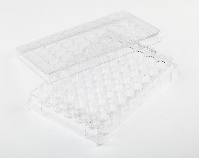 FisherbrandSurface Treated SterileTissue Culture Plates Well volume: 1.55mL;