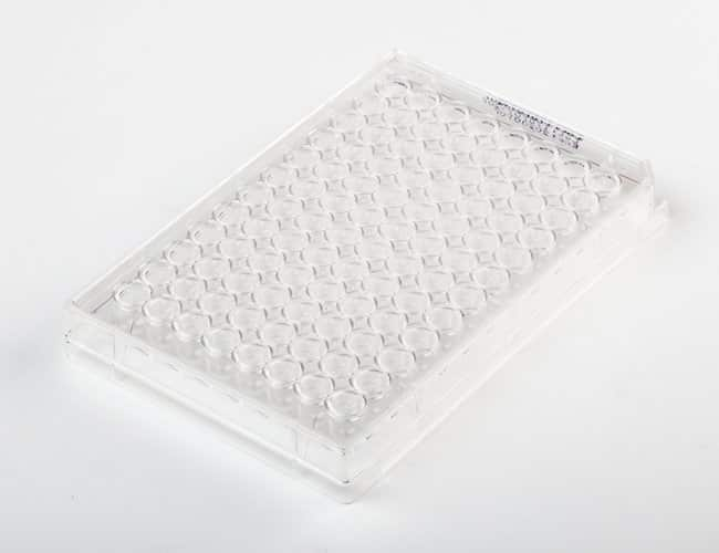Fisherbrand96-Well, Cell Culture-Treated, Flat-Bottom Microplate Well volume: