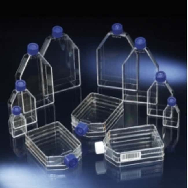 Thermo Scientific™ Nunc™ Cell Culture Treated Flasks with Filter Caps: Laboratory Flasks Dishes, Plates and Flasks