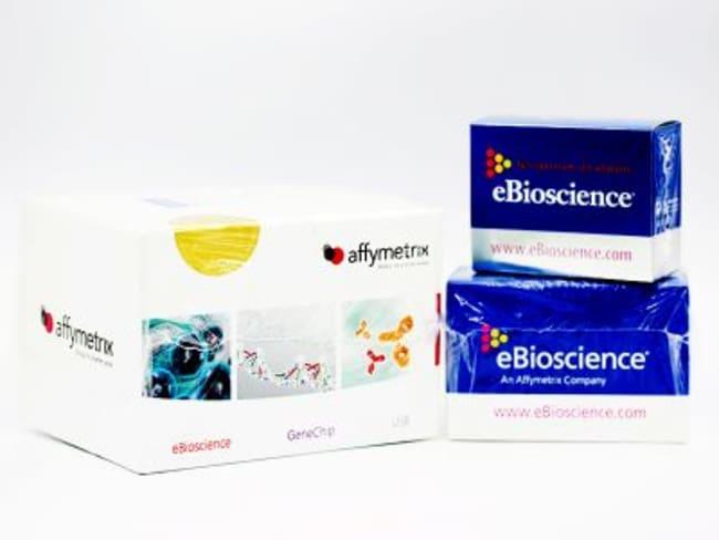 Ebioscience Human Ifn Gamma Elisa Ready Set Go Kit Elisa Kits