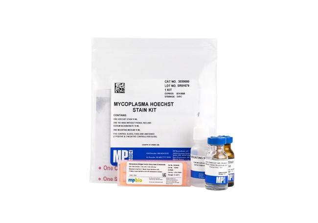 MP BiomedicalsMycoplasma Hoechst Stain Kit Mycoplasma Stain Kit:Antibiotics