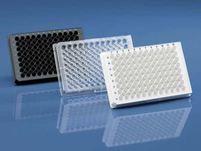 BRAND&trade;&nbsp;BRAND<i>plates</i>&trade; pureGrade&trade; 96-Well Microplates Well volume: 350&mu;L; Clear; Transparent F-bottom BRAND&trade;&nbsp;BRAND<i>plates</i>&trade; pureGrade&trade; 96-Well Microplates