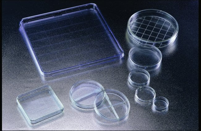 Falcon™Bacteriological Petri Dishes with Lid
