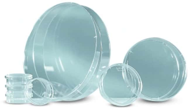 Greiner Bio-One™Polystyrene Petri  Dishes: Dishes Dishes, Plates and Flasks