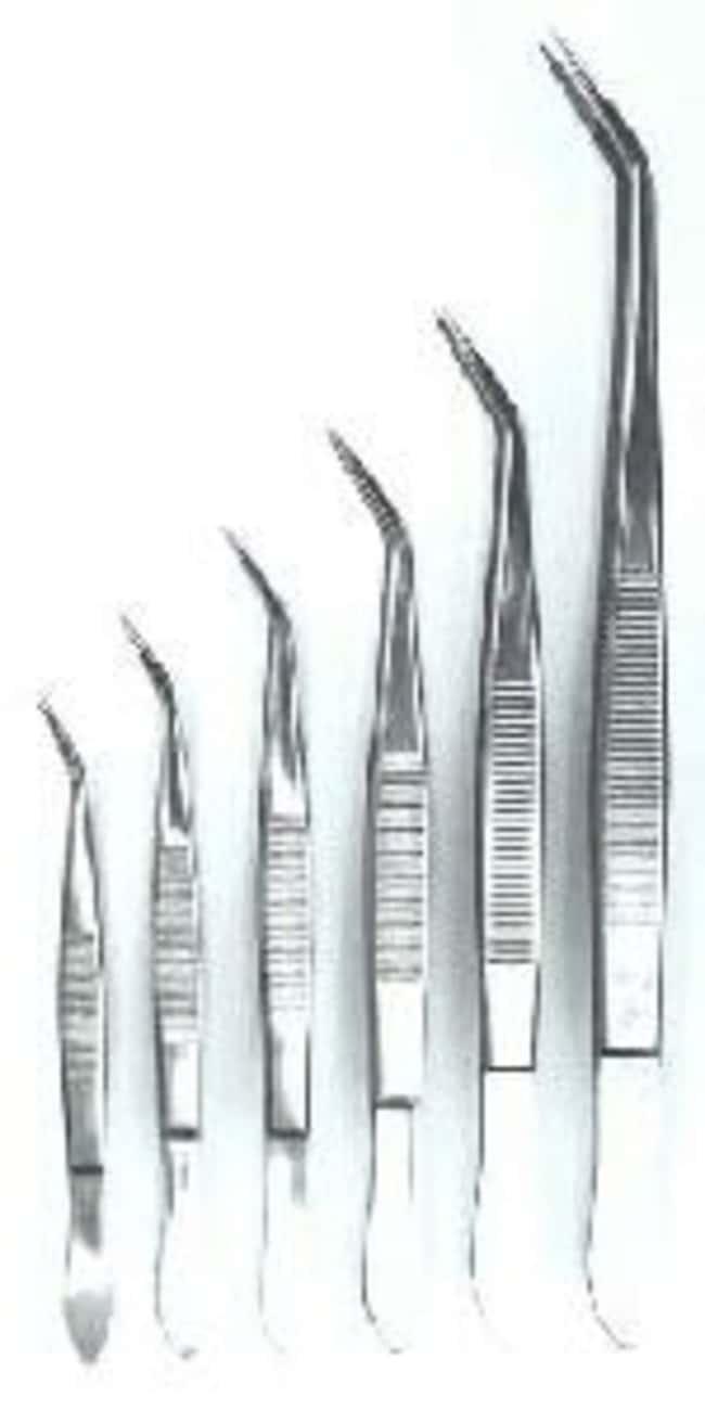Schneider Gerd™Pointed Tweezer: Spatulas, Forceps and Utensils Products