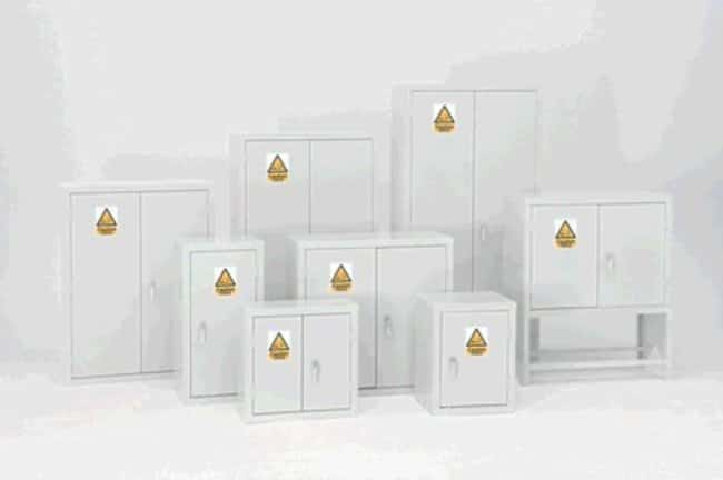 Corrosive Resistant Acid and Alkali Cabinets: Safety Cabinets Fume Hoods and Safety Cabinets