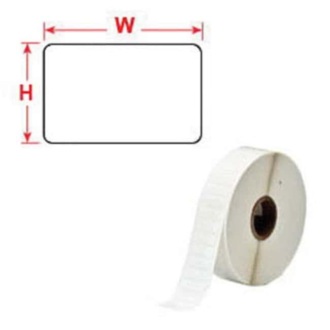 Brady™FREEZERBONDZ™ Polyester Thermal Transfer Printer Labels