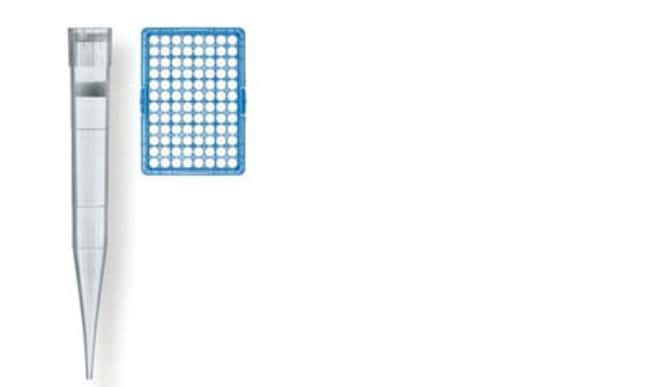 Brand™Non-Sterile Polyethylene Filter Tips Volume: 50 to 1000uL, TipBox, blue rack Brand™Non-Sterile Polyethylene Filter Tips