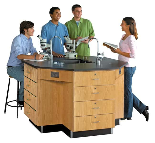 Diversified Woodcrafts Octagon Workstation with Sink   Black phenolic resin