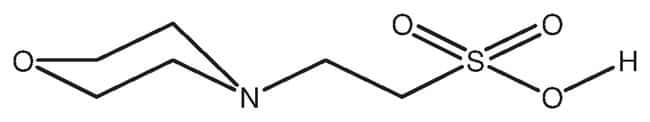 MES hydrate, 99 %, Acros Organics