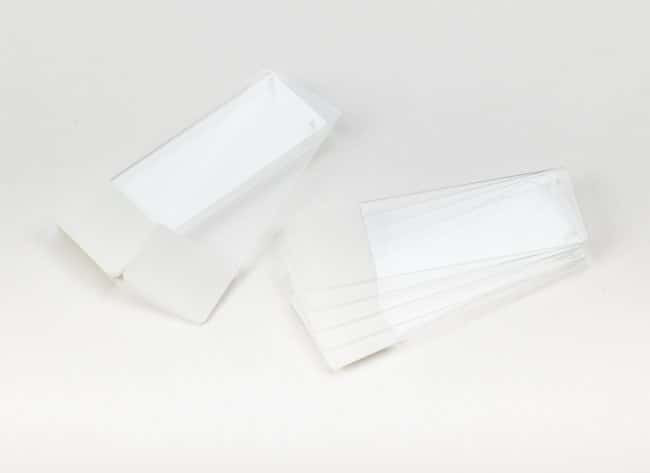 Fisherbrand™Superfrost™ Plus Microscope Slides