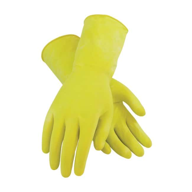 Fisher Scientific Safety Choice Natural Rubber Latex Gloves:Gloves, Glasses