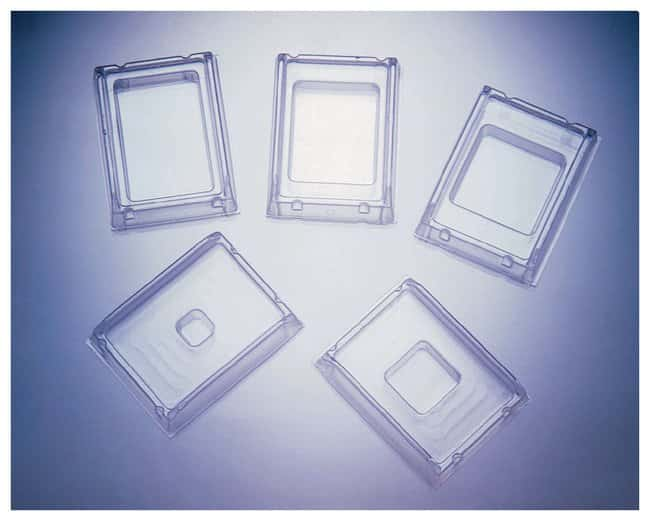 Fisherbrand Disposable Base Molds 15 x 15 x 5cm:Histology and Cytology