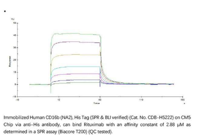 ACROBiosystemsACROBiosystems Human Fc gamma RIIIB / CD16b (NA2) Protein,