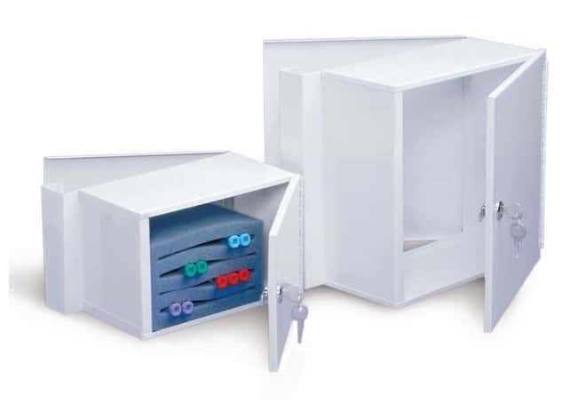 Tagg Industries Dual-Door and Traditional Lock Box for Courier Service