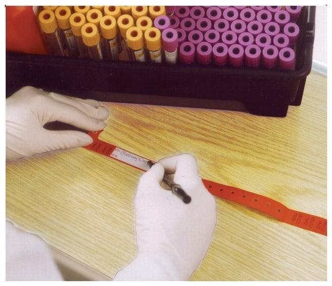 FisherbrandSecurline Blood Bands:Blood, Hematology and Coagulation Testing