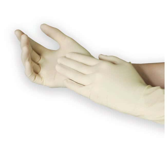 Fisherbrand Powder-Free Latex Exam Gloves with Aloe  X-Large:Gloves, Glasses